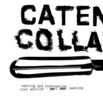 CD-cover: Catena Collapse – Nesting