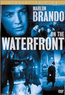 Cover: On the Waterfront